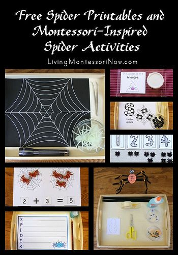 Free Spider Printables and Montessori-Inspired Spider Activities (long list of free spider printables)