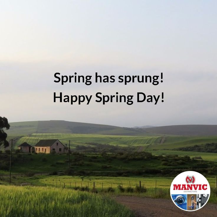 Hooray! Spring is here! We can smell the braai and feel the sand between our toes already! From all of us at Manvic Distributors: we hope you have a fun and safe summer ahead! #SpringDay