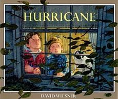 fantastic David Wiesner book that's great to use when teaching weather