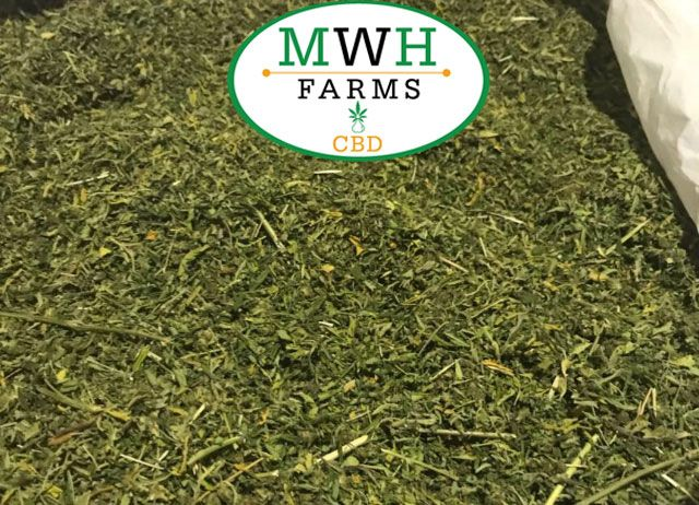 Mwh Farms has Bulk Hemp Biomass for Sale in Minnesota state