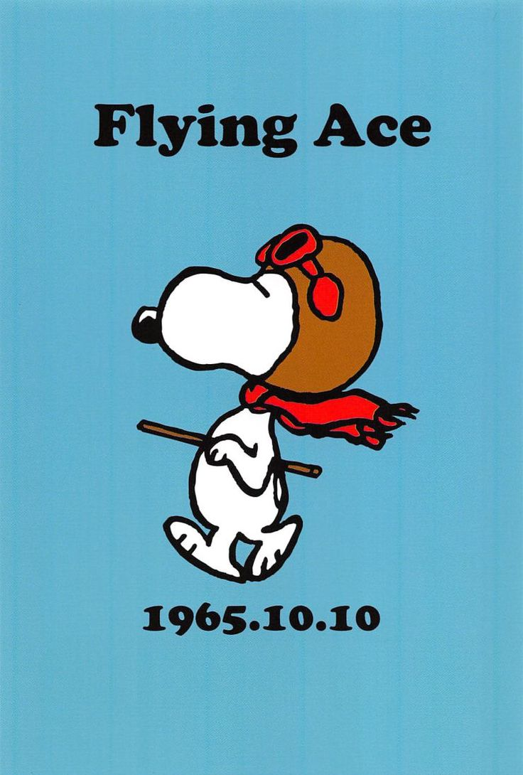 SNOOPY POSTCARD COLLECTION| Flying Ace