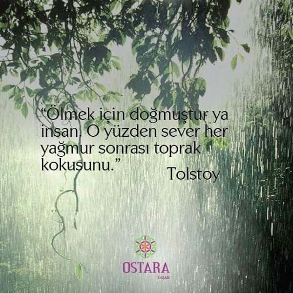 """""""Ölmek için doğmuştur ya insan. O yüzden sever her  yağmur sonrası toprak  kokusunu.""""  Tolstoy  #istanbuldayagmur #busabahyagmurvar #toprak #bereket"""