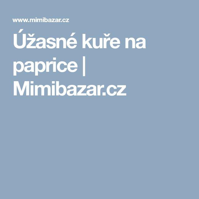 Úžasné kuře na paprice   Mimibazar.cz