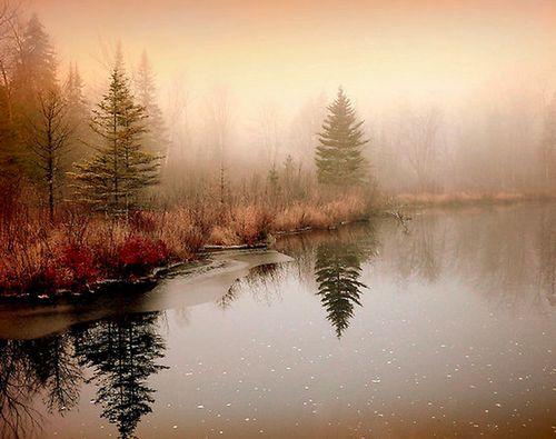 Pinterest Photography: Misty, Reflections. #landscape #photography