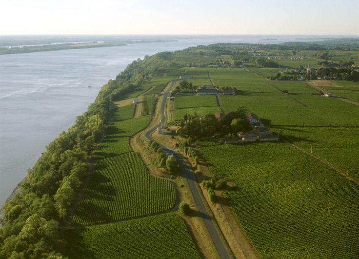 View Over Vineyards in Cotes de Bourg, Right Bank of the Gironde River in Bordeaux wine region– ©CIVB