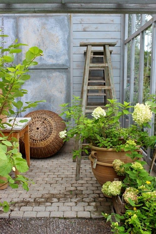 17 Best images about ZETAS TRÄDGÅRD on Pinterest | Gardens, Pewter ... : trädgård garden : Trädgård