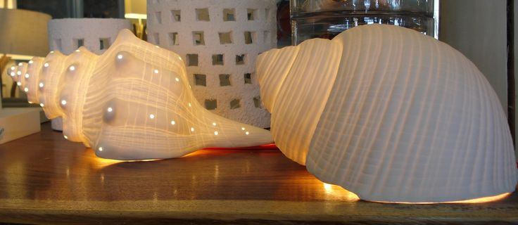 Porcelain lights in shell shape