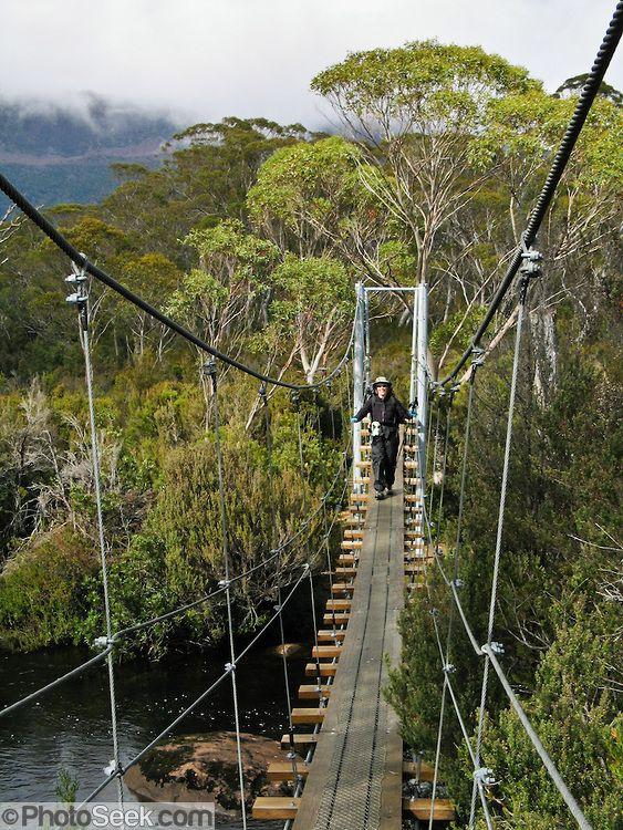   Swing bridge, Cradle Mountain-Lake St Clair National Park, Tasmania ...