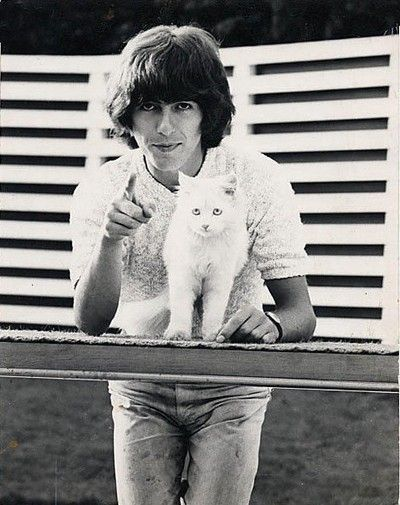 GEORGE HARRISON of The Beatles and snow white CAT. See tons of Celebs with Cats at: http://gotcats.org/CelebrityCats.html