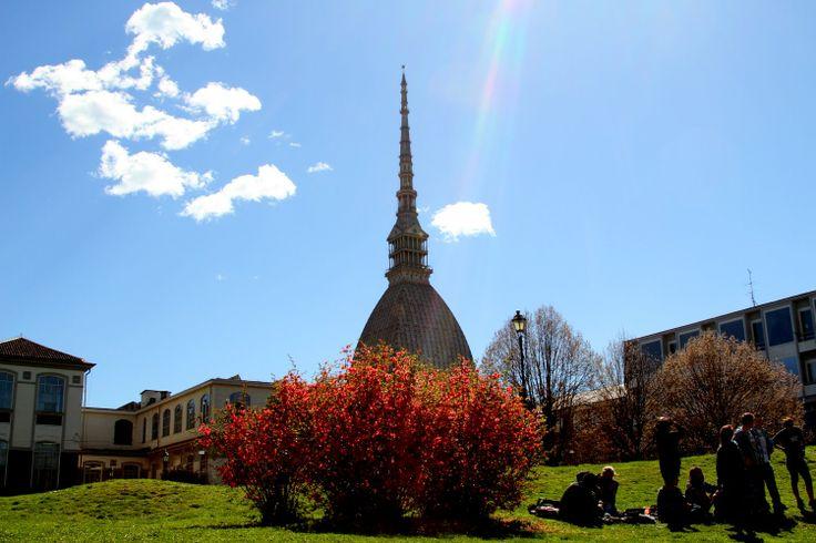 #Primavera ai giardini reali #Torino