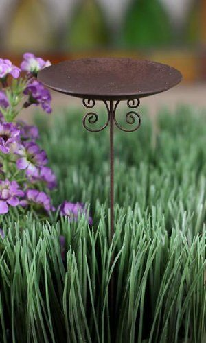 """Set of 4 - Rusty Wire Small Birdbath or Candle Pick for Fairy Gardens or Gnome Villages by Rustic Displays. $15.96. Set of 4 - Rusty Wire Small Birdbath or Candle Pick for Fairy Gardens or Gnome Villages. Place in your fairy garden or gnome village as a birdbath. Insert in a floral arrangement and top with a votive candle for a unique feel.. Each measures 3"""" wide and 7.5"""" tall. Set of 4 - Rusty Wire Small Birdbath or Candle Pick for Fairy Gardens or Gnome Villages"""