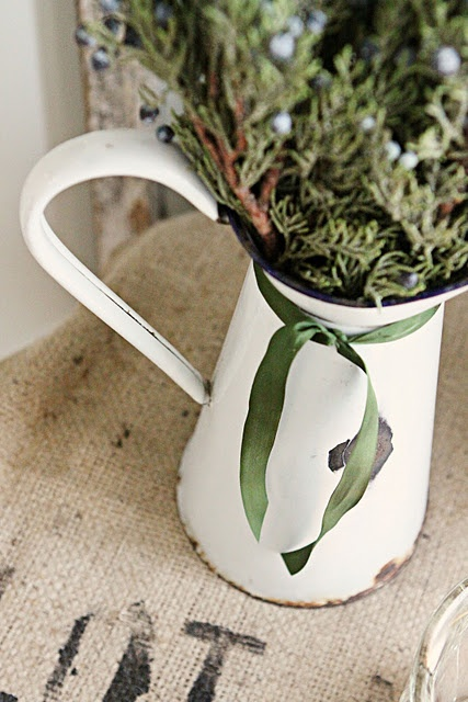 Juniper berry's and an old pitcher who would have thought, love it