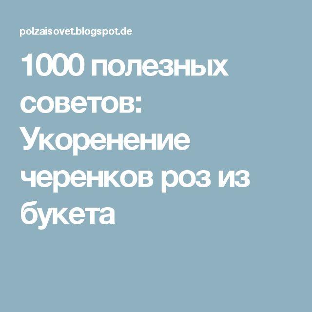 1000 полезных советов: Укоренение черенков роз из букета