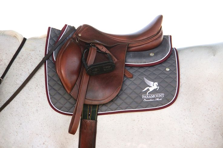 Paramount Premiere Z Jumping Saddle in Cognac colour
