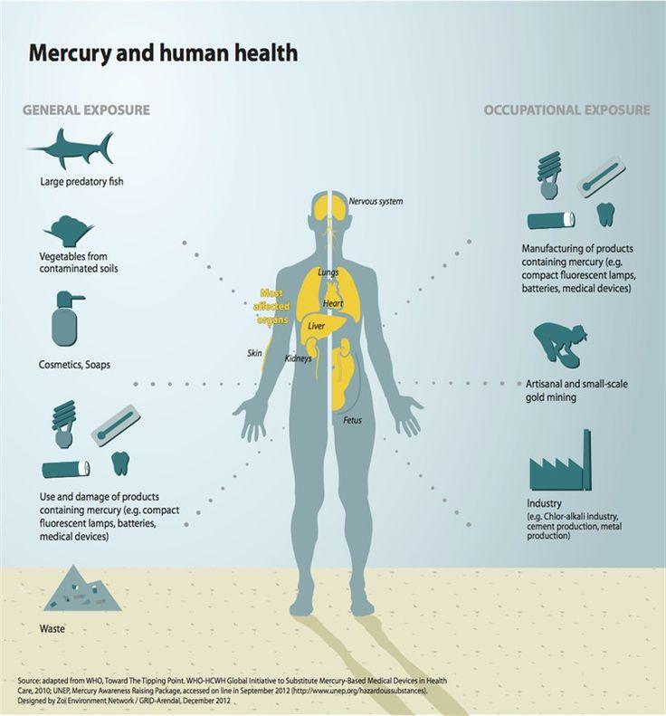 Mercury Poisoning In Drinking Water