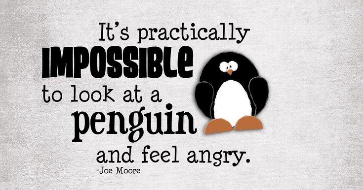 penguin love - Google Search