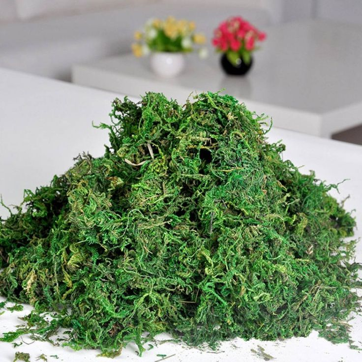 Best Artificial 50g Reindeer Moss For Lining Plant Flower Garland Christmas Decor Trees: Amazon.co.uk: Kitchen & Home