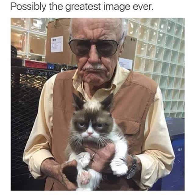 Stan Lee is Grumpy Cat. | The Geek Strikes Back
