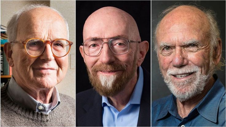 Einstein's waves win physics Nobel  ||  The 2017 Nobel prize in physics has been awarded to three scientists for the detection of gravitational waves. http://www.bbc.co.uk/news/science-environment-41476648?utm_campaign=crowdfire&utm_content=crowdfire&utm_medium=social&utm_source=pinterest