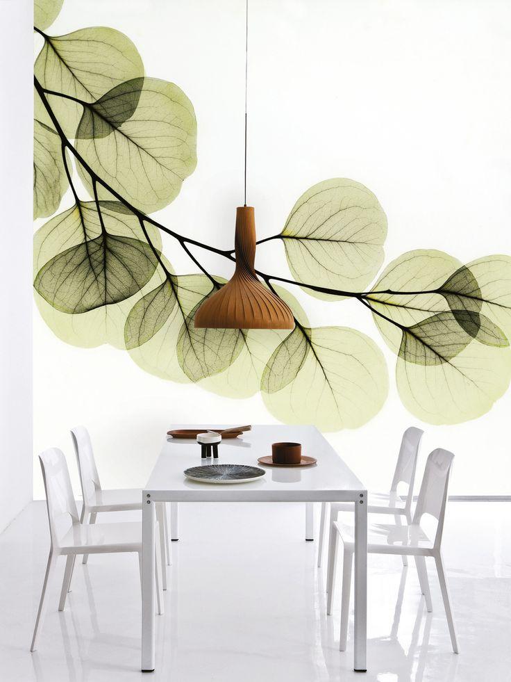 tapeten die sch nsten trends muster farben und co exotic art wand and flower wallpaper. Black Bedroom Furniture Sets. Home Design Ideas