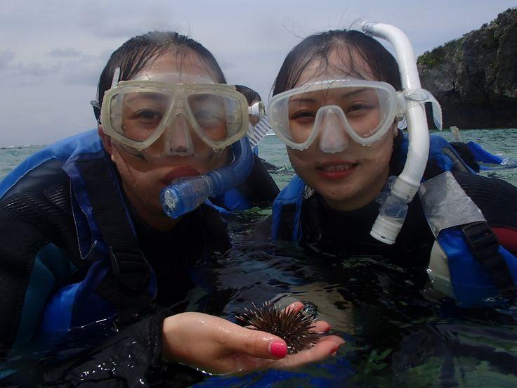 沖縄の海に感動! - http://www.natural-blue.net/blog/info_1774.html