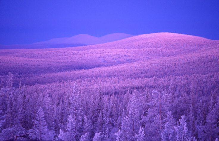 """Kaamos is Finnish for polar night, when a night lasts for more than 24 hours. It's the exact opposite of """"midnight sun."""" When it happens, the world turns red and blue and purple, as the sky reflects off the snow-covered earth."""