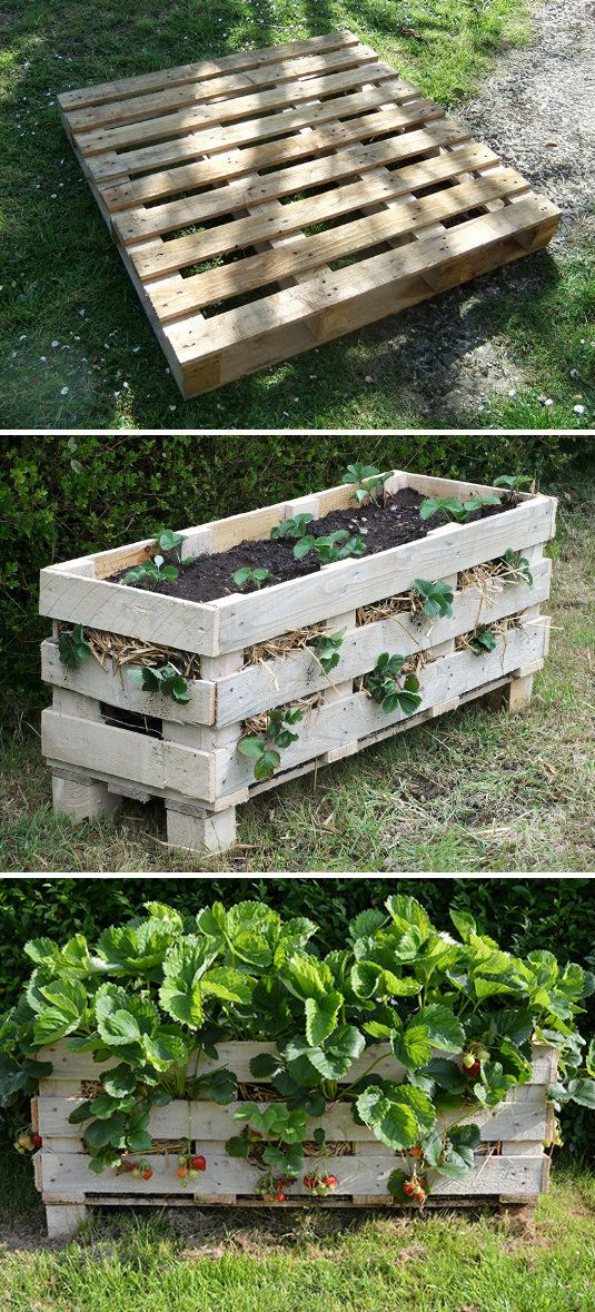 Strawberry pallet planter great repurposed pallet idea for Great pallet ideas