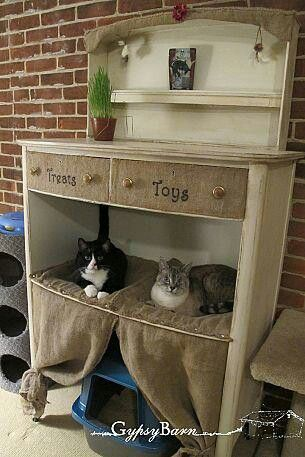 For the closet in the cats' room.