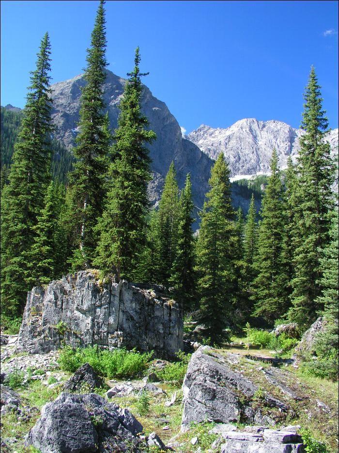 Black Prince Cirque trail - Peter Lougheed Provincial Park near Kananaskis, AB