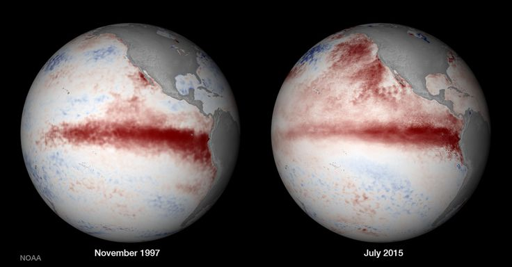 Side-by-side comparison between the ongoing strong El Niño and the strongest El Niño on record, which occurred in 1997 and 1998.
