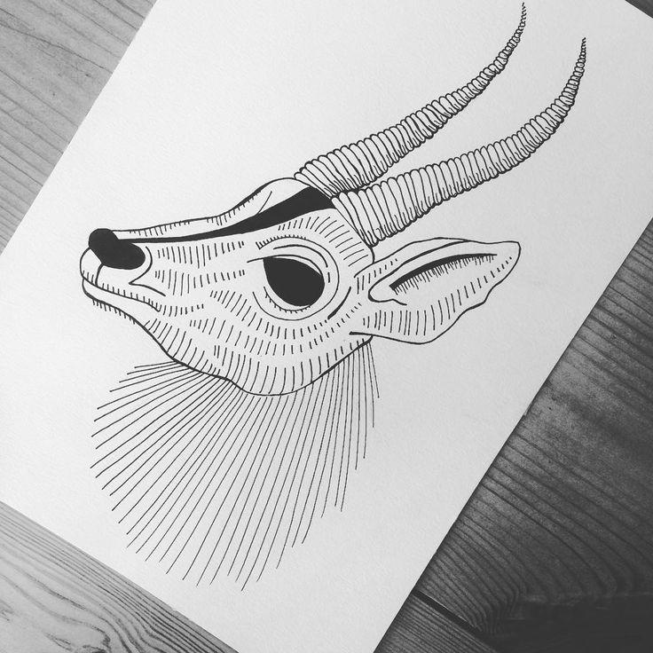 https://www.instagram.com/simonestubgaard/?hl=en try something new. gazelle inspired ✍🏻✍🏻 #art #drawing #pendrawing #personalizedart #gazelle #inspired #trying #new #stuff #exploring #artist #simonestubgaard