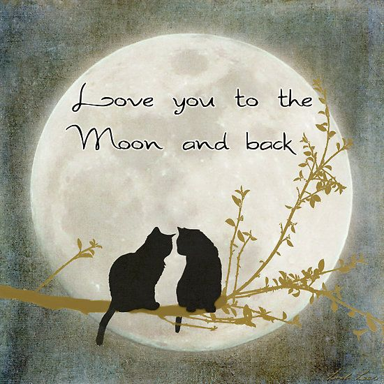 """thesoulchronicles: """" Love you to the moon and back """""""