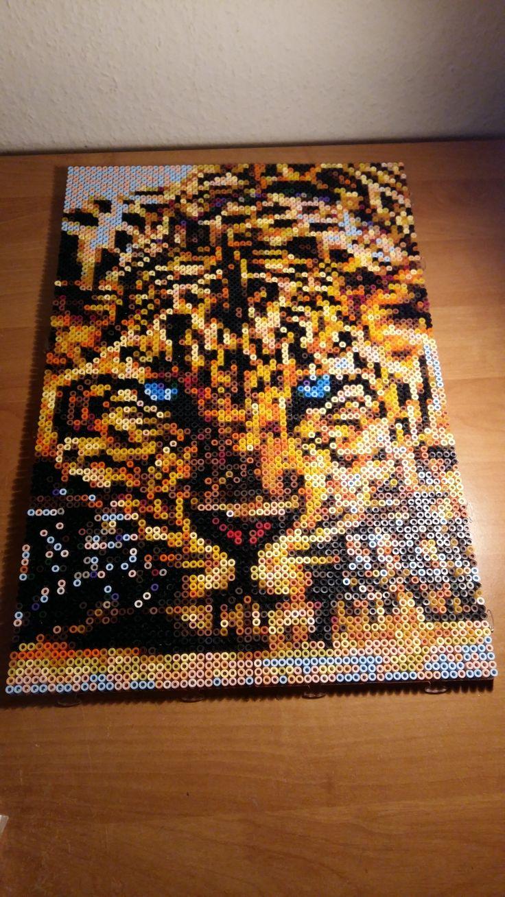 Tiger Photo Pearls 5400  von Pia gesteckt Photo Pearls
