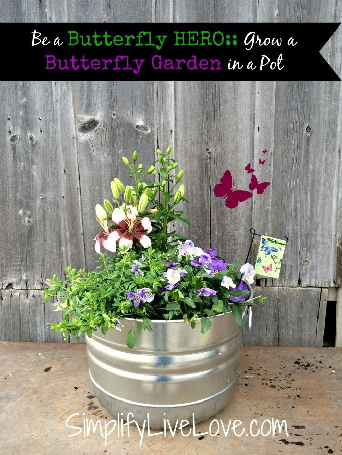 Butterfly Garden Ideas pastel butterfly garden party with such cute ideas via karas party ideas karaspartyideascom Be A Butterfly Hero Grow A Butterfly Garden In A Pot Butterfly Habitats Are
