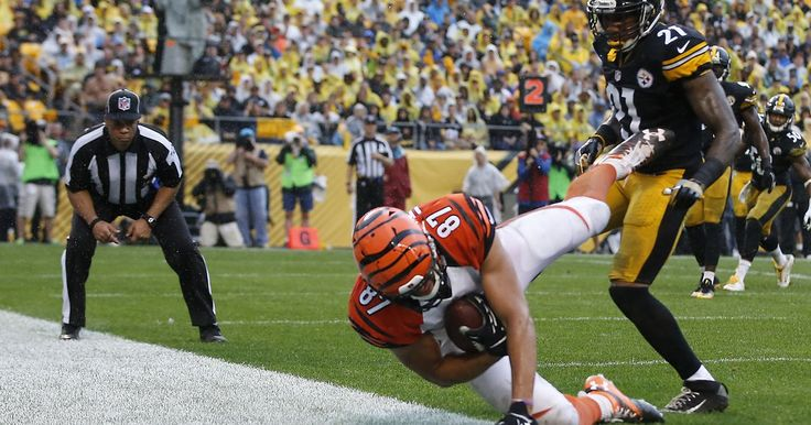 Bengals coach Marvin Lewis addresses fallacy of replay