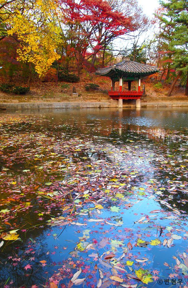 창덕궁[Changdeokgung Palace Complex] - 애련지