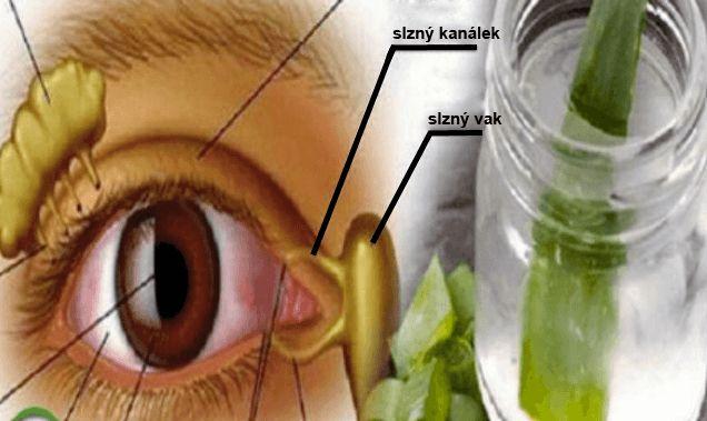 Známý ruský doktor Vladimír Petrovič Filatov, oftalmolog a chirurg, je velkým zastáncem jednoho superzdravého lékupro oči, který vám dnes blíže představíme. Tvrdí, že s tímto čistě přírodním receptem vyléčil již mnoho pacientů. Uvedený lék dokáže nejen zlepšit ostrost zraku, ale i snížit nitrooční tlak, který může být příčinou pozdějších nevratných degenerativních změn očí. Recept na …