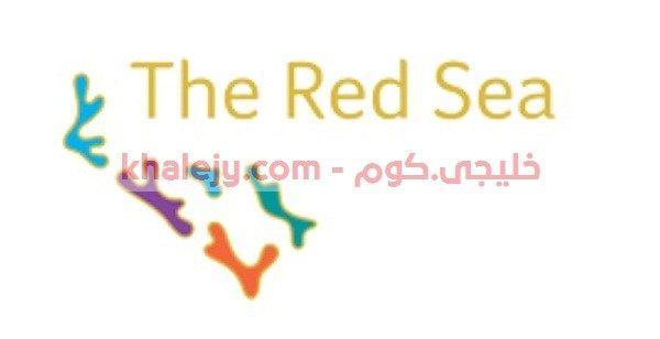 تعلن شركة البحر الأحمر للتطوير المالكة المسئولة عن مشروع البحر الاحمر وظائف هندسية إدارية تقنية علمية لحملة الدبلوم البكالوريوس ا Sea Red Sea Calligraphy