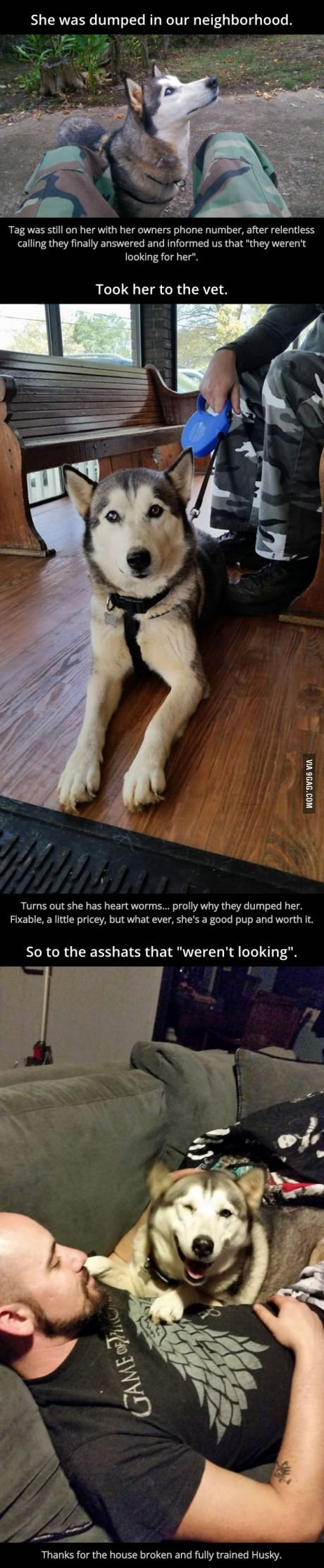 I love this story... the bit at the end is pretty funny too. Rescued Husky.