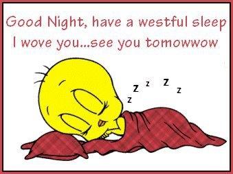 Tweety Sleep