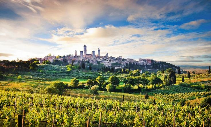 Siena, San Gimignano and Greve in Chianti with Wine Tasting with Tourboks.