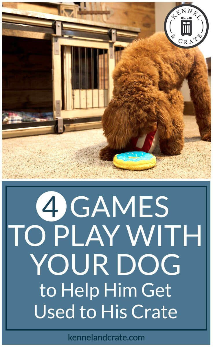Games To Entice Your Pet To Stay In Their Crate Training Your
