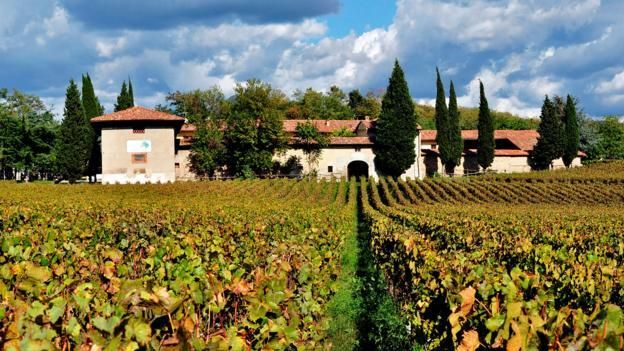 This is Italy's most unspoiled, elite wine paradise. #flights & #hotels #Cruises #RentalCars #mexico #lajolla #nyc #sandiego #sky #clouds #beach #food #nature #sunset #night #love #harmonyoftheseas #funny #amazing #awesome #yum #cute #luxury #running #hiking #flying