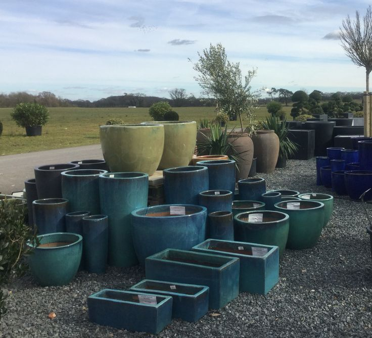 Just some of our pots at AP