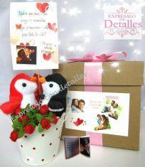Peluches pinguinos cariñosos