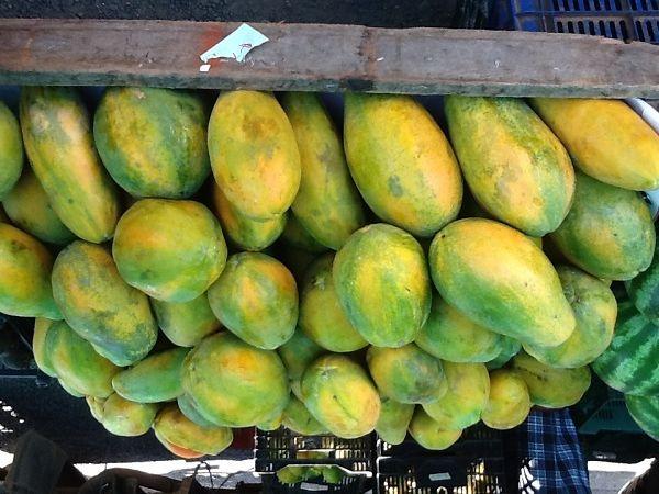 Fabulous Fruits of Costa Rica www.schooloftheworld.org