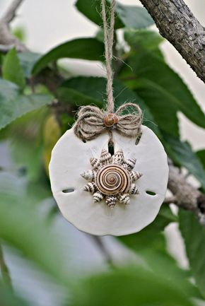 Sand Dollar Ornament, Natural Sundial Spiral Seashell Mini Conch Shells Twine Holiday Coastal Decoration Mermaid Beach Decor - TheSandbar - pinned by pin4etsy.com