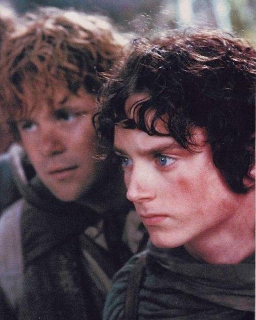 Frodo and Sam :)