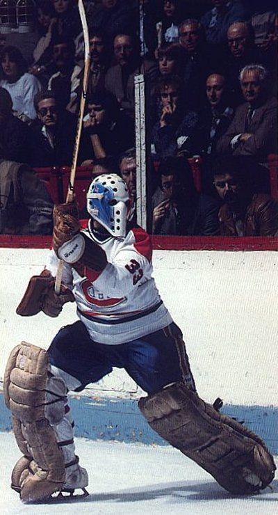 Richard Sevigny / Montreal Canadiens En 1974, il débute sa carrière aux Castors de Sherbrooke dans la Ligue de hockey junior majeur du Québec. En 1977, il passe professionnel avec les Wings de Kalamazoo en Ligue internationale de hockey. En 1979, il débute dans la Ligue nationale de hockey avec les Canadiens de Montréal Richard a remporté le trophée Vézina de 1982 avec Denis Herron et Michel Larocque avec le Canadien. En 1984, il rejoint les Nordiques de Québec. Il arrête sa carrière en 1988