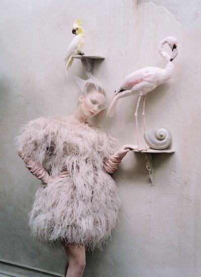 jennifer lawrenceAlexander Mcqueen, Pink Flamingos, Timwalker, Tim Walker, Fashion Photography, W Magazines, Fashion Editorial, Jenniferlawrence, Jennifer Lawrence
